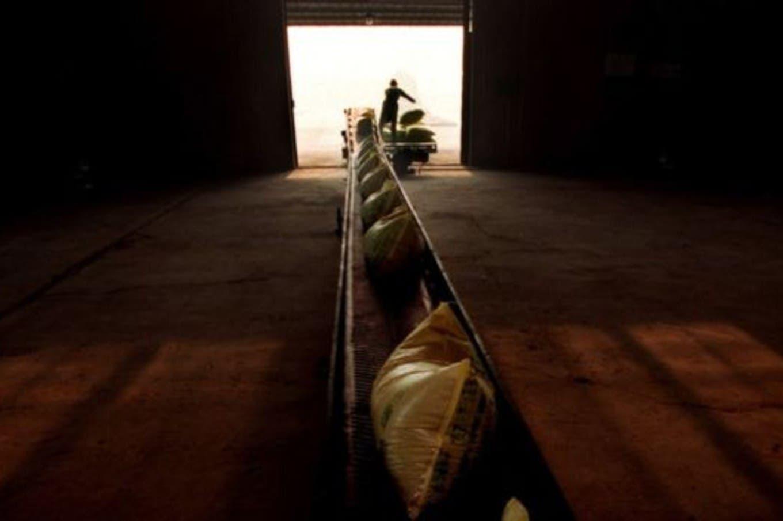 El imperio de Cargill: los secretos del gigante que factura US$113.500 millones por año
