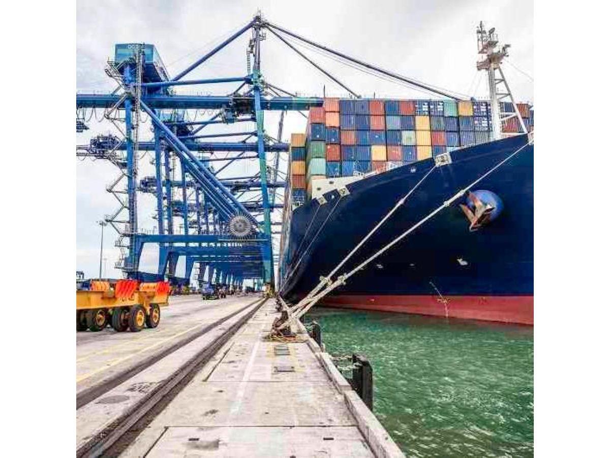 La exportación de alimentos anotó un buen desempeño en julio