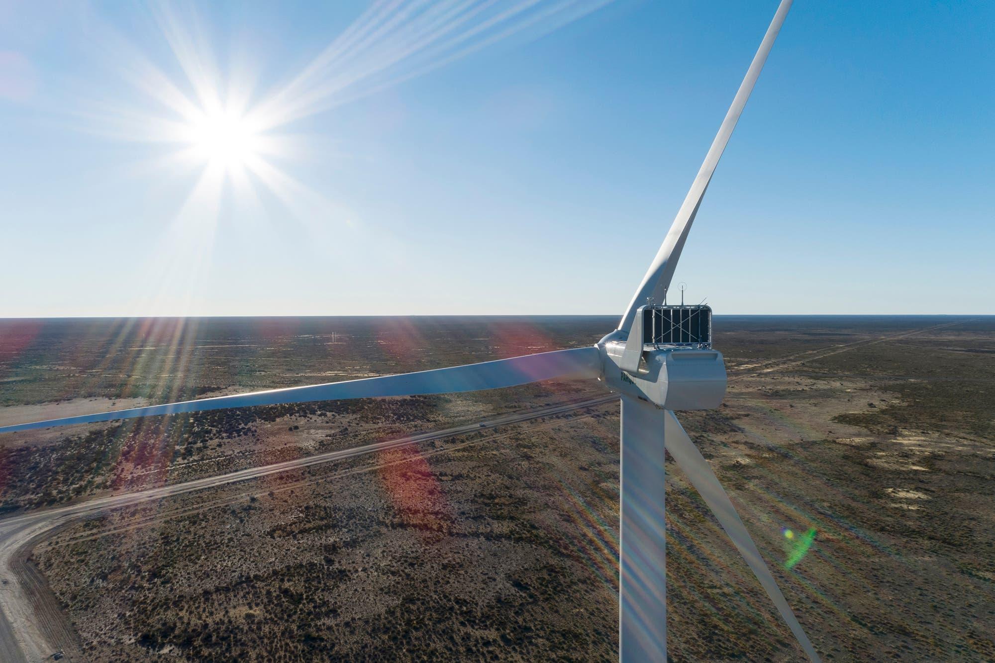 Energía eólica. Los desafíos de la industria más allá de la coyuntura