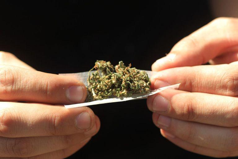 el-consumo-de-marihuana-desplazo-al-tabaco-entre-los-universitarios