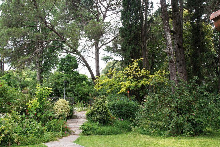 un-jardin-natural-donde-predominan-la-experimentacion-y-el-amor-por-las-plantas