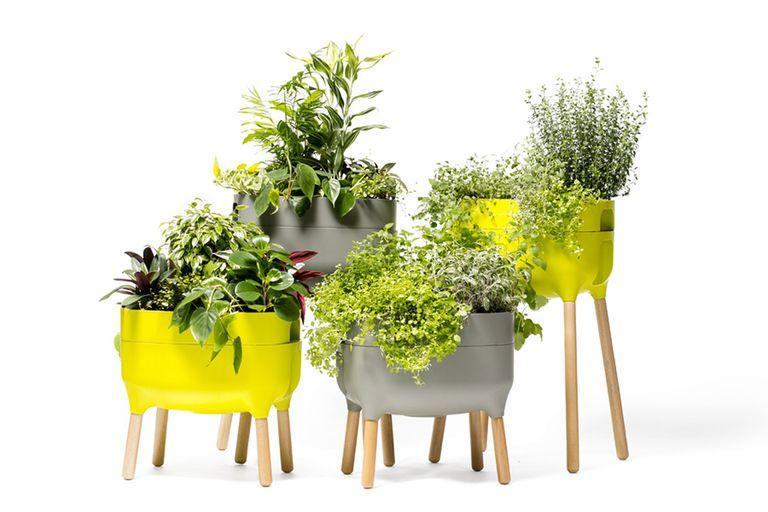 macetas-inteligentes,-robots-corta-cesped-y-otros-gadgets-que-te-van-a-ayudar-a-cuidar-tus-plantas